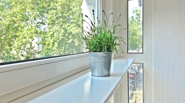 Eingezogenes Brett am Oberlicht für den Fensterbrettgarten